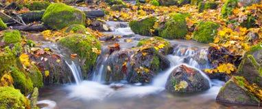 Belle cascade à écriture ligne par ligne de cascade dans la forêt d'automne Image stock
