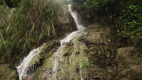 Belle cascade à écriture ligne par ligne tropicale Île de Philippines Cebu banque de vidéos