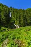 Belle cascade dans les montagnes photo libre de droits