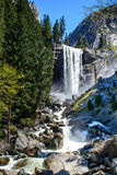 Belle cascade de Yosemite Images stock