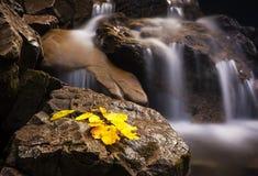 Belle cascade en montagnes carpathiennes Photographie stock libre de droits