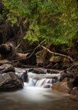 Belle cascade en montagnes carpathiennes Photographie stock