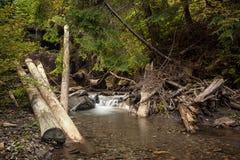 Belle cascade en montagnes carpathiennes Photos stock