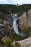 Belle cascade en parc national de Yellowstone Images libres de droits