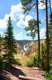 Belle cascade en parc national de Yellowstone Photographie stock libre de droits