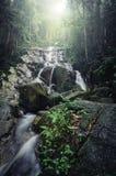 Belle cascade tropicale entourée par la forêt verte Photographie stock libre de droits