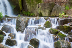 Belle cascate in foresta fotografia stock