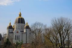Belle cathédrale parmi les arbres au printemps photos libres de droits