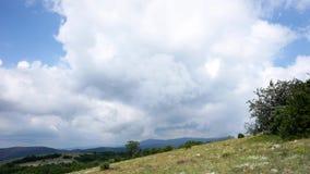 Belle colline e panorama delle foreste stock footage