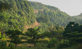 Belle colline en Indonésie blitar Photos stock