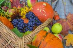Belle composition en automne avec des potirons et des tournesols Photo libre de droits