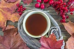 Belle composition en automne avec la tasse de thé photos stock