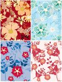 Belle configuration florale Photos stock