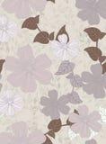 Belle configuration florale Images libres de droits