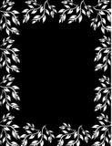 Belle configuration florale Photo stock