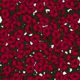 Belle configuration florale sans joint Illustration de vecteur de fleur Zone des fleurs Images libres de droits