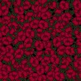 Belle configuration florale sans joint Illustration de vecteur de fleur Zone des fleurs Photos stock