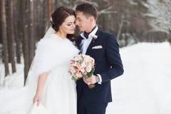 Belle coppie di nozze all'aperto Fotografia Stock