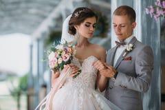 Belle coppie di nozze che abbracciano nel parco con gli alberi verdi su fondo Sposo in un vestito grigio di affari, camicia bianc immagine stock