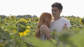 Belle coppie felici che ballano insieme sul giacimento del girasole, la donna che fila intorno Ragazza dello zenzero con lei video d archivio