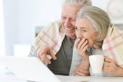 belle coppie senior con la coperta facendo uso del computer portatile a casa Immagine Stock Libera da Diritti
