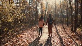 Belle coppie in una foresta di mattina video d archivio