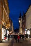 Belle costruzioni di Heidelberg Immagine Stock Libera da Diritti