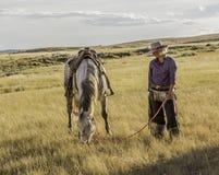 Belle cow-girl avec le cheval photos stock