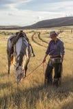 Belle cow-girl avec le cheval images libres de droits