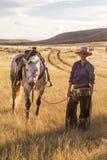 Belle cow-girl avec le cheval photos libres de droits