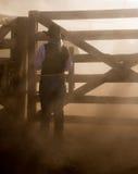 Belle cow-girl dans la scène occidentale Images stock