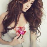 Belle dame avec l'orchidée images libres de droits