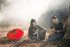 Belle dame dans une robe de jardin, beaux instruments de musique vivants Image stock