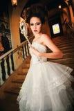 Belle dame dans une robe de soirée sur une boule vénitienne image stock