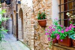 Belle décoration de rue avec des fleurs dans la ville médiévale Spello Photographie stock