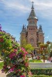 Belle decorazioni floreali in Victory Square, Timisoara, romano Immagini Stock Libere da Diritti