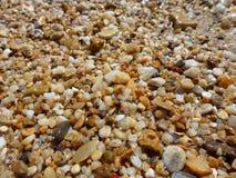 Belle di pietre e di sabbia bagnate colorate multi sulla spiaggia immagine stock