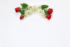 Belle disposition de fleurs sur le fond d'isolement par blanc Photos stock