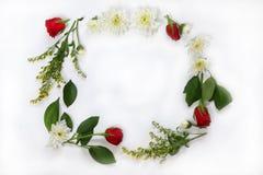 Belle disposition de fleurs sur le fond d'isolement par blanc Images stock