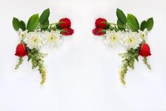 Belle disposition de fleurs sur le fond d'isolement par blanc Photographie stock libre de droits