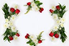 Belle disposition de fleurs sur le fond d'isolement par blanc Images libres de droits