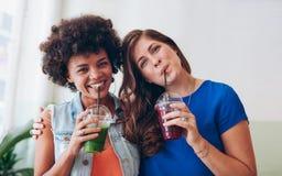 Belle donne che bevono insieme succo fresco fotografia stock libera da diritti