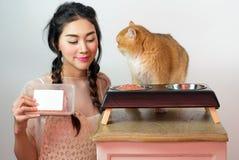 Belle donne con i gatti ed il cibo per gatti Fotografia Stock