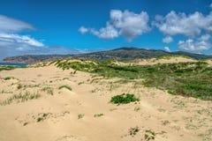 Belle duna ed erbe di sabbia bianche sotto il cielo gonfio della nuvola Fotografia Stock Libera da Diritti