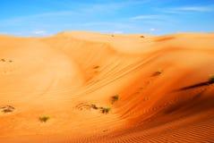 Belle dune in deserto dell'Oman Fotografia Stock Libera da Diritti