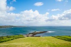 Belle erbe verdi dell'Irlanda Immagini Stock Libere da Diritti
