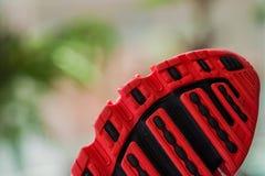 Belle espadrille rouge moderne sur un fond vert Photos libres de droits