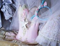 belle fée rose de ballet de danse de mode de style d'équipement de cabinet de garde-robe Images stock