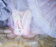 belle fée rose de ballet de danse de mode de style d'équipement de cabinet de garde-robe Photo stock