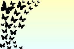 Belle farfalle nere su un fondo giallo delicato, illustrazione, pendenza fotografia stock libera da diritti